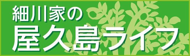 細川家の屋久島ライフブログ